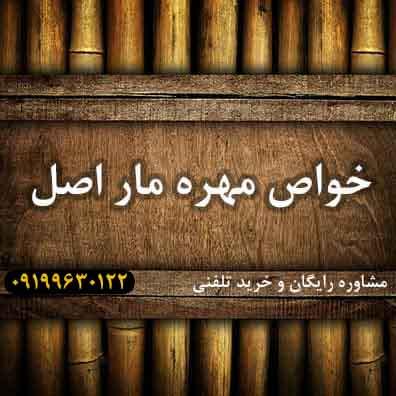 خواص-مهره-مار-اصلی