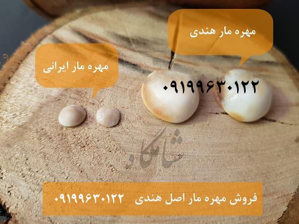 عکس-مهره-مار-ایرانی