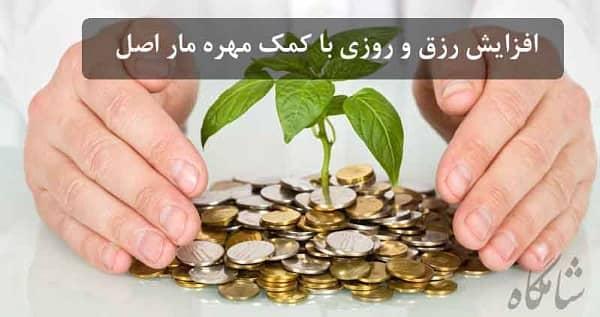 مهره مار و ثروت